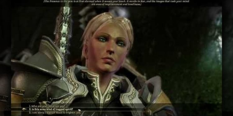 Dragon Age Origins Arcane Warrior Guide
