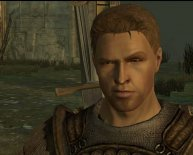 Dragon Age Origins best character